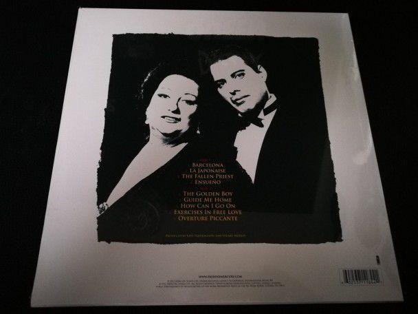"""12"""" Vinyl album Freddie Mercury..."""